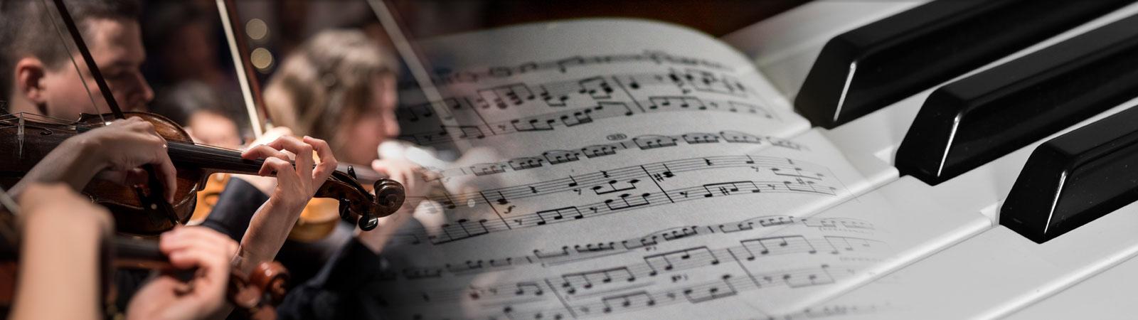 LearnMusicNZ